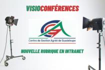 Actualités - CGA Guadeloupe rubriques - visios.png