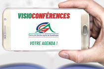 slides CGA Guadeloupe - visioconférences .png